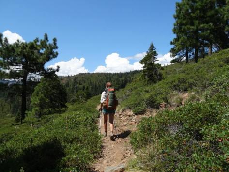 OB_hiking_green