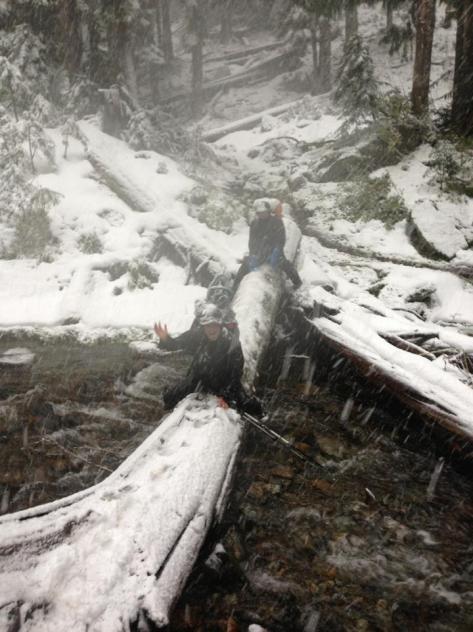 OB_Liz_logcrossing_snow