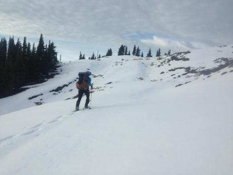 OB_snowshoes