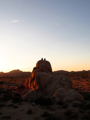 Coincidence and 30 Pack. Boy Scout Trail, Joshua Tree National Park, CA.
