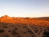 Trails in the desert. Joshua Tree National Park.